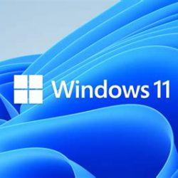 Windows 11 Pro/Home/Enterprise - 32/64bit key, single/multiple PCs - Win 11 Pro, 1 PC