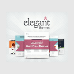 Elegant Themes - Lifetime - All Themes & Plugins - All themes + API